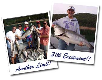 Beaver Lake Striper Fishing Guides