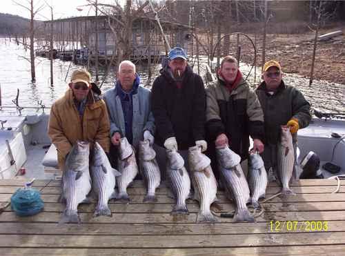 Excellent Striper Fishing