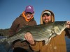 (01/13/2014) - Nice Striped Bass