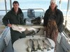 (03/26/2014) - Nice Striped Bass