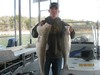 (03/30/2014) - Nice Striped Bass