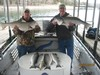 (04/01/2014) - Nice Striped Bass