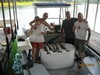 (06/25/2016) - Nice Striped Bass