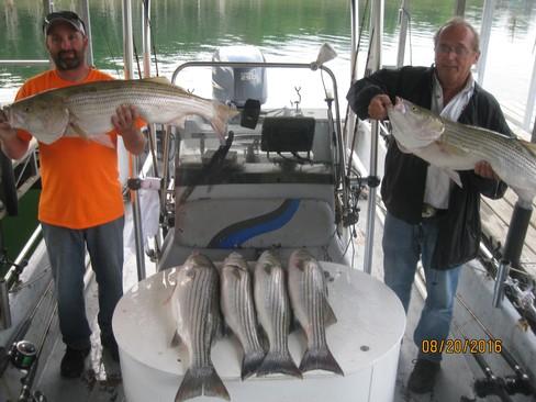 Beaver lake striped bass fishing report 08 20 2016 for Beaver lake fishing guides