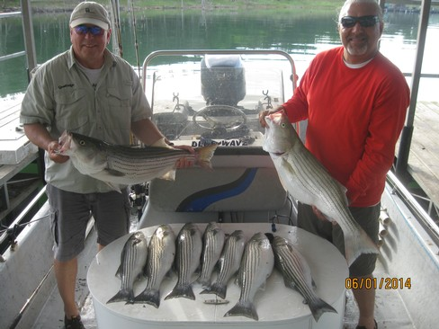 Beaver lake striped bass fishing report 06 01 2014 for Beaver lake fishing guides