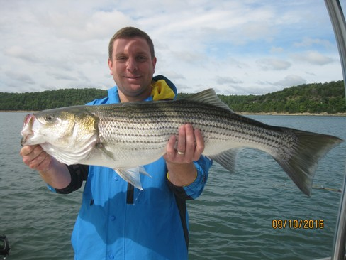 Beaver lake striped bass fishing report 09 10 2016 for Striped bass fishing reports