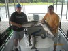(07/05/2014) - Nice Striped Bass