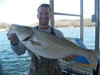 (03/03/2018) - Nice Striped Bass