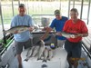 (08/31/2014) - Nice Striped Bass