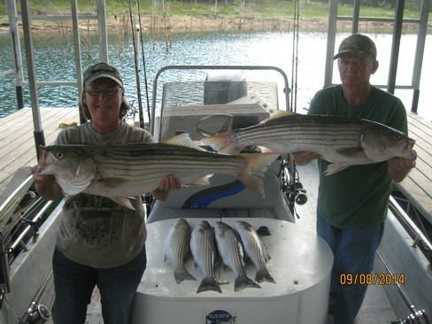 Beaver lake striped bass fishing report 09 08 2014 for Beaver lake arkansas fishing report