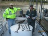 (10/03/2014) - Nice Striped Bass