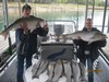 (10/13/2014) - Nice Striped Bass