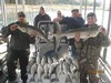 (11/08/2014) - Nice Striped Bass