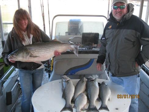 Beaver lake striped bass fishing report 03 01 2016 for Beaver lake fishing guides