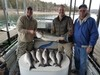 (03/29/2019) - Nice Striped Bass