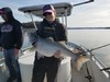 (04/03/2019) - Nice Striped Bass