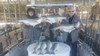 (02/28/2020) - Nice Striped Bass