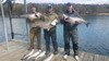 (03/02/2020) - Nice Striped Bass