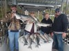 (04/11/2020) - Nice Striped Bass