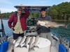 (07/03/2020) - Nice Striped Bass