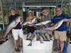 (07/16/2020) - Nice Striped Bass
