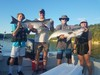 (07/24/2020) - Nice Striped Bass