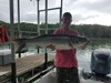 (08/11/2020) - Nice Striped Bass