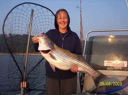 Nice Fish! -- Striped Bass