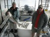 (11/02/2013) - Nice Striped Bass