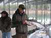 (11/21/2013) - Nice Striped Bass