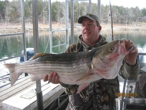 Beaver lake striped bass fishing report 12 01 2013 for Beaver lake fishing guides