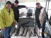 (04/26/2013) - Nice Striped Bass