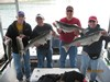 (04/29/2013) - Nice Striped Bass