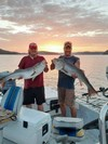 (08/10/2020) - Nice Striped Bass