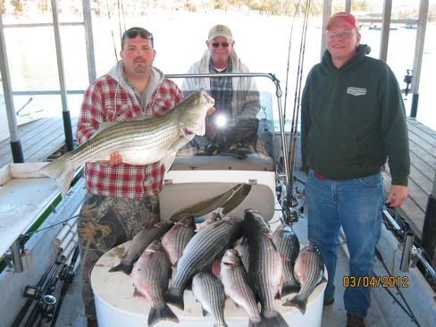 Beaver lake striped bass fishing report 03 04 2012 for Beaver lake fishing guides