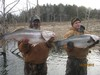 (12/30/2012) - Nice Striped Bass