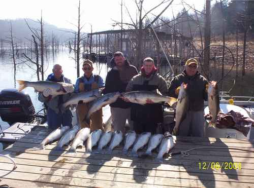 Excellent Striper Fishing
